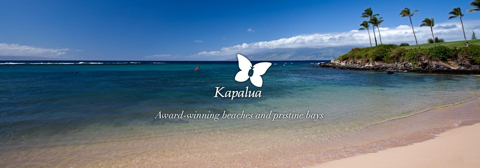 Kapalua Resort Maui Hawaii Real Estate Maui Resort